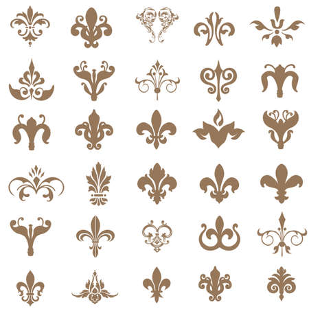 fleur de lis: Lily flower image isolated on white background