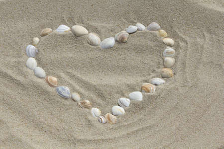 Shells heart on beach background  Summer composition with copy space  Top view photo