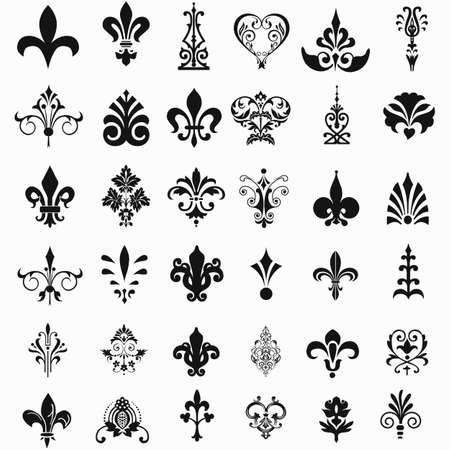 fleur de lis: Lily flower. Vector image isolated on white background. Illustration