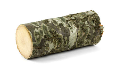 obsolete: Wooden obsolete log. Top view. Isolated on a white. Stock Photo
