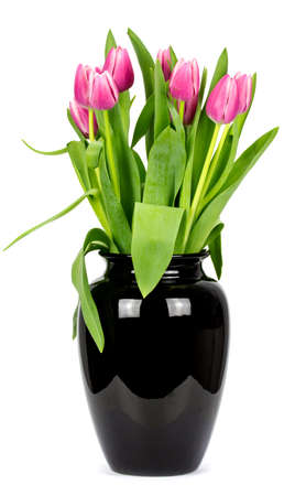 matherday: tulips in a vase on a white background