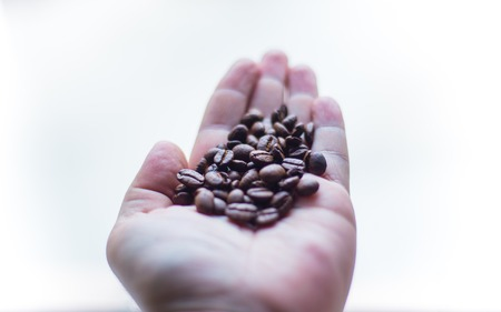 Coffee beans - Close up of person holding coffee beans in hands. Stock Photo