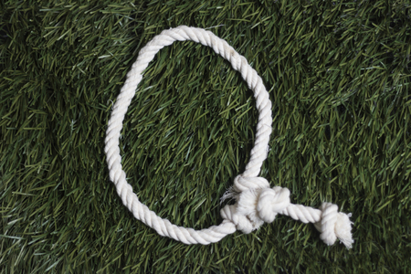 Rope latin alphabet on grass. Letter Q