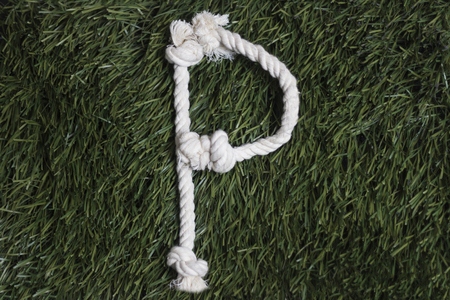 Rope latin alphabet on grass. Letter P Banco de Imagens