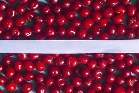 Cherry background with white ribbon. Fresh organic berries. Pile of ripe cherries. Healthy fruit Reklamní fotografie - 124858956
