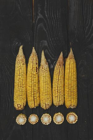 Shucked and cleaned sweet corn on black wood background. Sweet corn cut on desk.