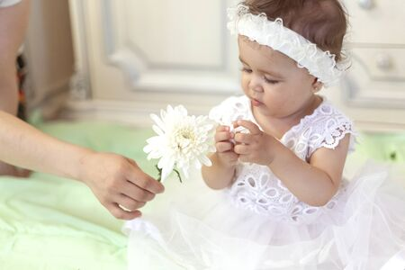 Baby girl in white dress taking a beautiful single white flower. Little princess playing with a white flower at her first birthday