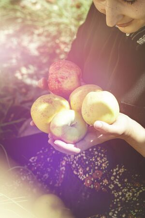 Portrait of beautiful middle-eastern woman at apple garden. Young female posing with freshly picked autumn apple fruits. Portrait of woman at nature. Eating fresh apple. Autumn portrait of Apple woman