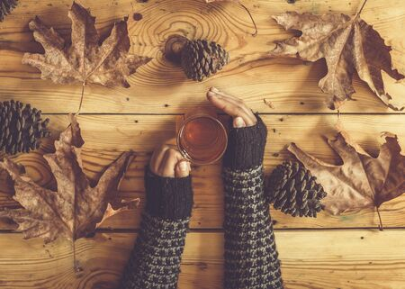 Woman hands holding a cup of hot tea on wooden autumn background with fall leaves and pine tree cones. Top view. Warming drink in cold autumn days. Calm, comfort, relaxation and leisure concepts. Stock fotó