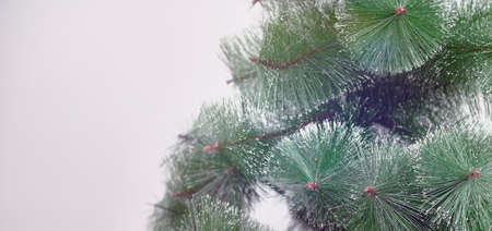 Unadorned Christmas tree against the white background. Decorative Christmas tree without any ornate. Copy space