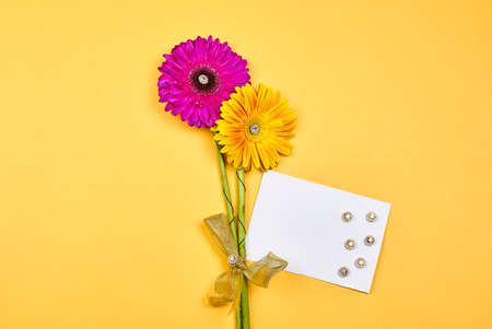 Beautiful daisy flowers and white cards with copy space. Spring floral background. Flower background on yellow
