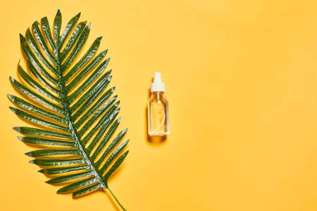 Hand sanitizer and tropical palm leaf on a bright yellow backdrop. Antiseptic gel on yellow. Copy space