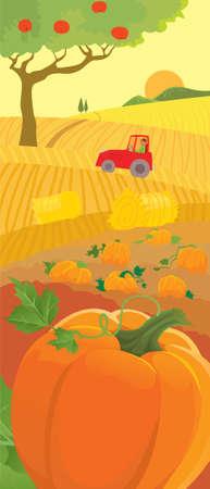 rural land: Rural scene of harvesting