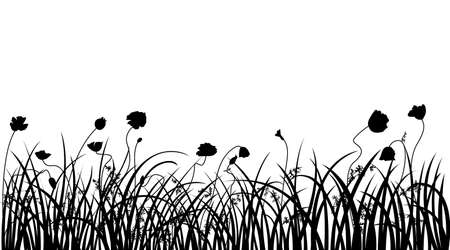 poppy field: Poppy field silhouette. All objects are divided separatel Illustration