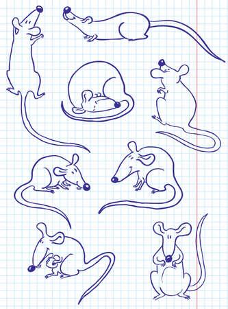 Doodle rat (mouse) set Vector