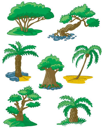 yew: Trees set #3 (date palm, coconut palm, juniper, yew, elm, myrtle, box) Illustration