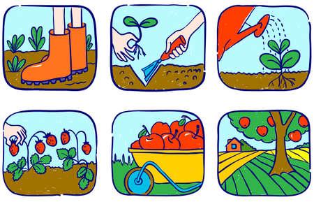 regando el jardin: Conjunto de jardiner�a