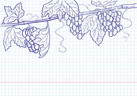 Grapevine line art frame Vector