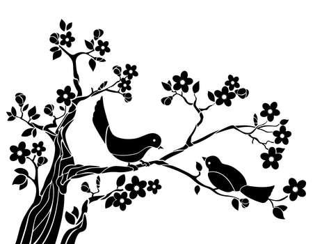 singing bird: Birds on a branch of sakura