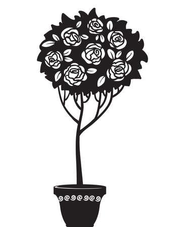 Silhouette of rosebush in a pot Stock Vector - 7601072