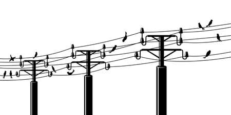 powerline: Silhouettes of birds in electrical wires Illustration