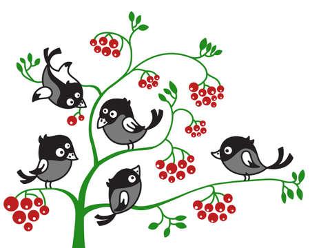 urraca: Ilustraci�n de aves en una rama