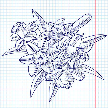 daffodils: A bouquet of Narcissus (doodle version) Illustration