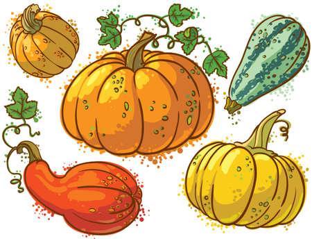 gourds: Cute colourful pumkins set