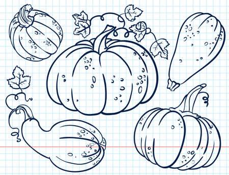 Doodle pumkins set Vector