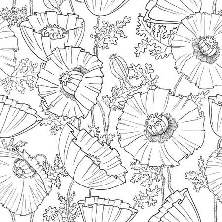 Seamless pattern with poppies flower