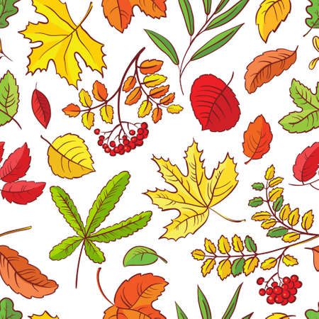 Autumn season seamless with leaves Stock Vector - 21060208