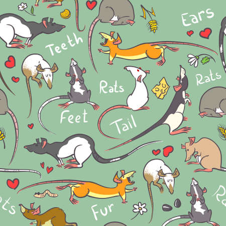 Seamless pattern with cute rats Vector