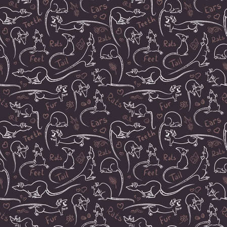 Seamless pattern with cute doodle rats Vector