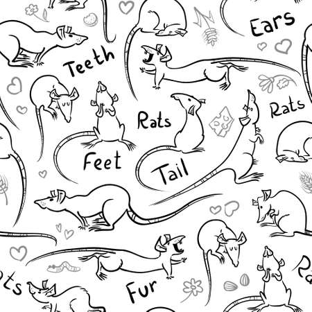 Seamless pattern with cute sketchy rats Vector