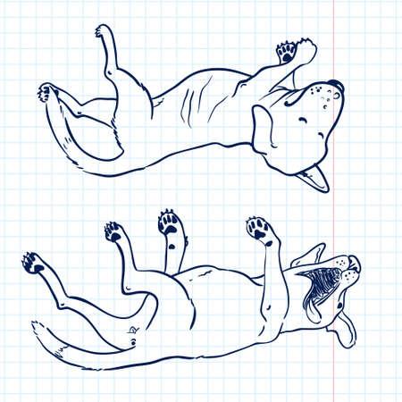lie: Sketchy dogs lie on their backs Illustration