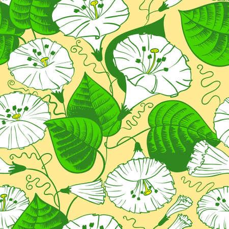 convolvulus: Floral doodle seamless pattern Illustration