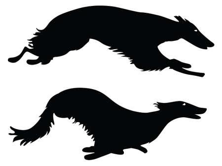 borzoi: Silhouettes running Russian Borzoi Dogs, working dogs Illustration