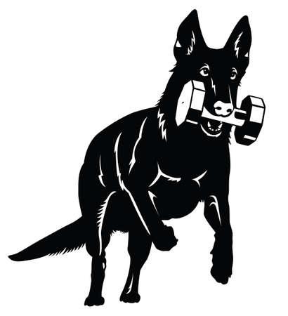 obediencia: Silueta del perro de pastor alem�n con aport objeto