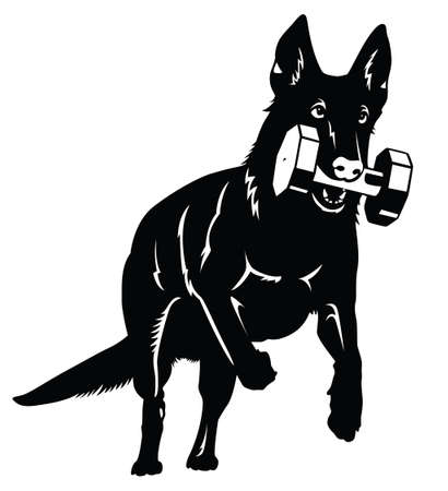 German shepherd Dog silhouette with aport object Vettoriali