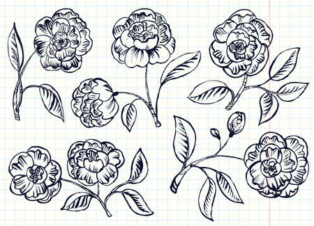 and simplicity: Doodle simplicity rose vector set
