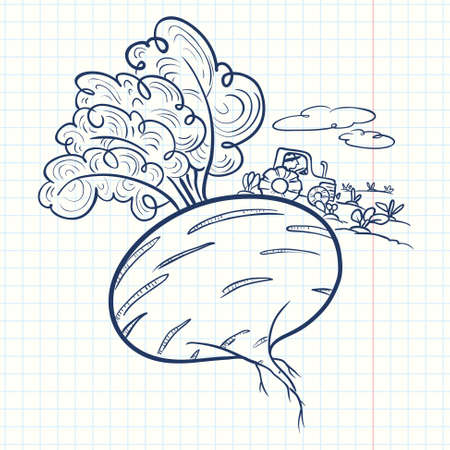 non cultivated: Farm illustration. Cute doodle beet and farmer Illustration