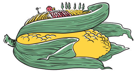 non   urban scene: Farm illustration.  Doodle ear of corn Illustration