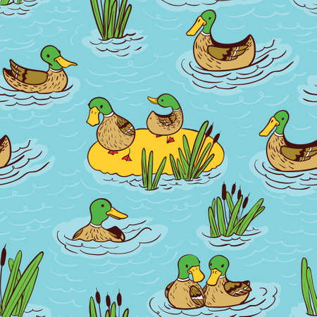 color image mallard duck: Vector doodle seamless pattern illustration with ducks and reed on water