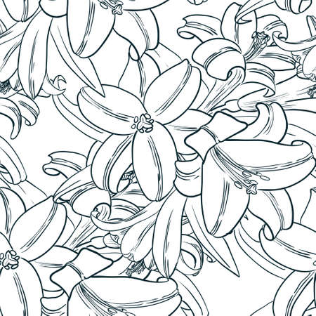 pistil: Vector black and white seamless pattern with lily flowers in doodle line art style Illustration