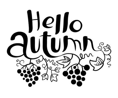 black grape: Hello Autumn lettering  black and white composition. Inspirational quote with hand-drawn artistic letters. Line art doodle vector illustration with grape vine and leaves. Design element for fall season posters, t-shirts and greeting cards Illustration