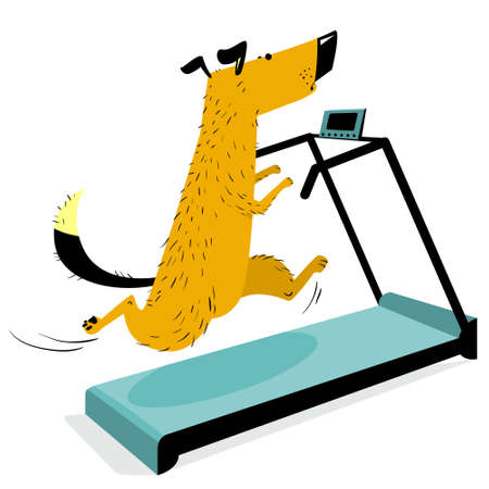Fast running dog on treadmill. Cute racing pet. Cartoon training dog in the gym. Vector isolaterd illustration with sporty animal