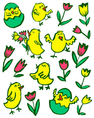 Easter chick set. Floral collection with spring chicken and tulips.