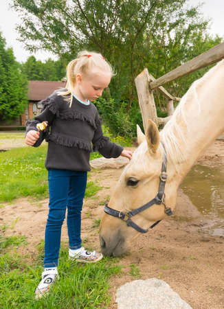 little girl near horse and other animals