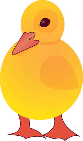 duckling Stock Vector - 15789556