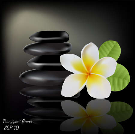 Balinese flower frangipani with stones on dark background